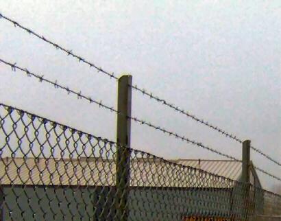 Pigtrådshegn: Fra højden 180 cm og opefter kan hegnet suppleres med pigtråd efter behov, her vist et eksempel på 2 rækker pigtråd lodret-op, på forlængelse af hegnsstolper.